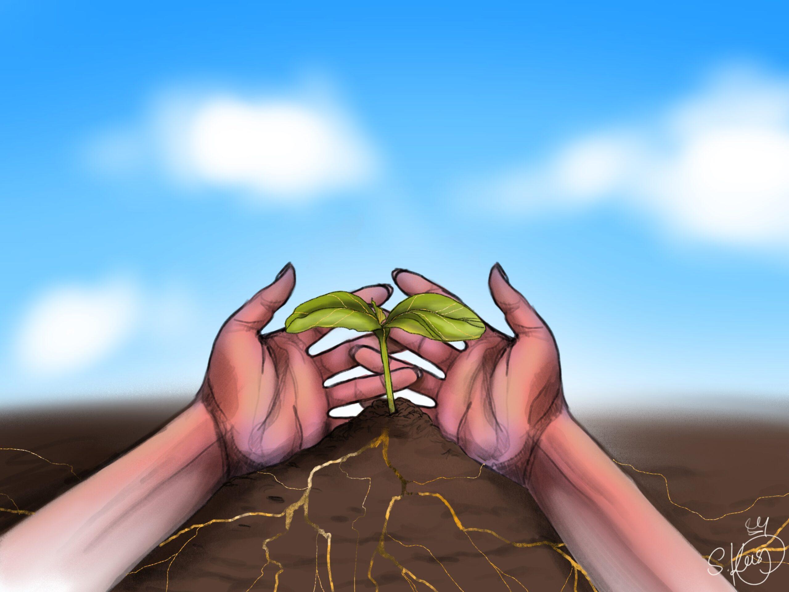 Jesu Herkunft aus den Völkern – der Stammbaum Jesu